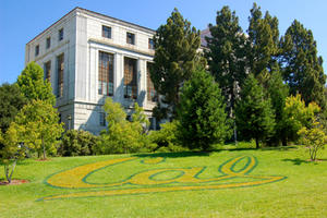 Collaboration at Cal and beyond